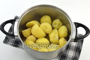 Картофель очистить и отварить до готовности в солёной воде. Воду слить. Картофель хорошо размять.