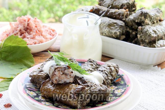 Фото Долма с красным рисом и барбарисом