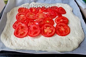 На тесто первым слоем выложить кружочки помидор, обязательно отступая от краёв по 6-7 см.
