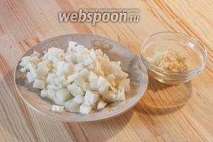 Чеснок и лук почистить и меленько порезать.