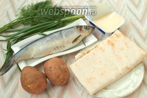 Для приготовления рулета нам понадобится армянский лаваш, солёная сельдь, картофель, плавленый сыр, зелёный лук и укроп.
