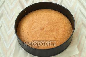 Духовку разогреть до 170°С и печь бисквит 25-30 минут.
