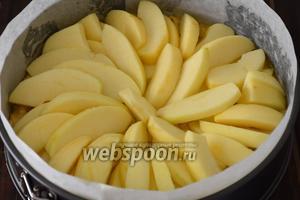 Разложить яблоки поверх теста.