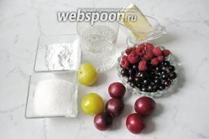 Для приготовления этого соуса потребуются следующие продукты: малина, чёрная смородина, алыча, сахар, крахмал, масло сливочное, вода.