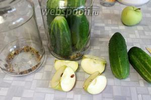 Огурцы подготовить, как в рецепте  огурцы маринованные со свёклой под капроновыми крышками . В подготовленные банки плотно уложить огурцы, переслаивая с дольками яблок, на дно насыпать пряности.