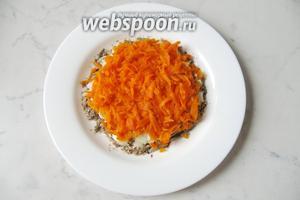 Морковь отварить, охладить, почистить и натереть на тёрке. Выложить на слой лука.