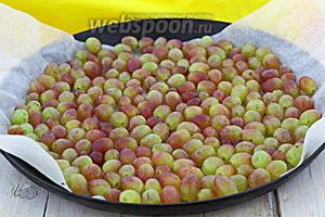 Противень застелите пергаментом. Разложите виноград в один слой. Разогрейте духовку. Отправьте противень в духовой шкаф при температуре 100-120°С. Дверцу оставьте приоткрытой. Держите в духовке 10-11 часов. Если ягоды небольшого размера, они подсохнут быстрее. Крупные виноградинки сушатся дольше.
