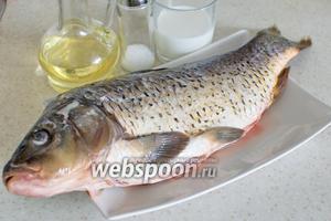 Для приготовления понадобится карп, масло растительное для жарки, мука, соль, перец, молоко. У меня рыба была уже очищенная и выпотрошенная.