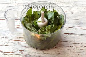 Мяту промыть, хорошо просушить. Оборвать листья и сложить их в кухонный комбайн (насадка «металлический нож»). Если есть такая необходимость, то добавить несколько капель воды.