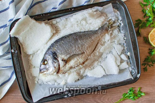 Фото Дорада в панцире из соли