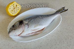 Рыбу промыть, удалить внутренности и жабры, чешую не снимать! Полить рыбку лимоном, положить 2 кружка в брюшко, можно ещё чуть присыпать перцем, только не солить.