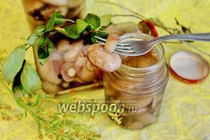 Маслята маринованные с корицей