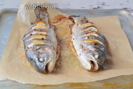 Когда рыба будет готова, дать немного остыть и подавать к столу, красиво украсив лимоном и зеленью. Гарниром к такой рыбе будет уместен приготовленный в разных вариантах картофель или любой овощной салат.