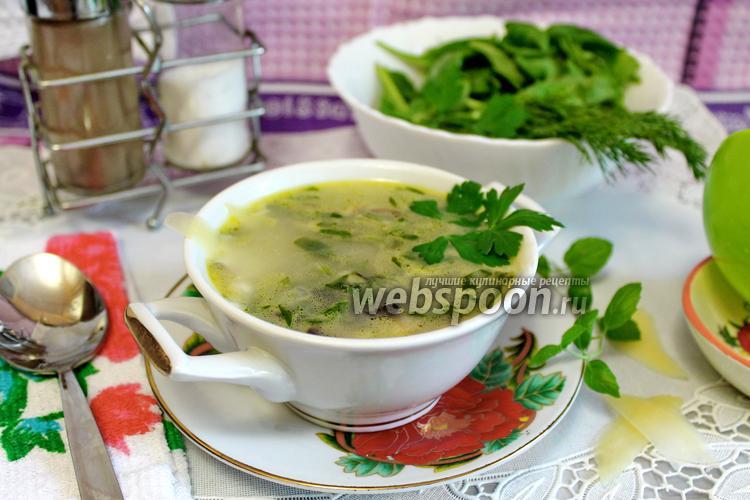 Фото Суп сливочный с курицей и грибами