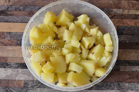 В глубокую формочку кладу на первый слой нарезанный картофель.