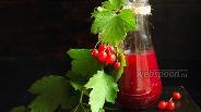 Фото рецепта Калиновый соус к овощному штруделю