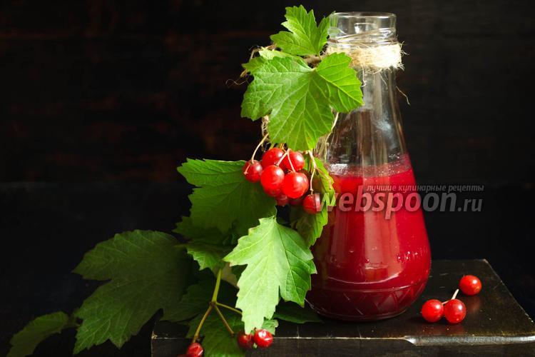 Фото Калиновый соус к овощному штруделю