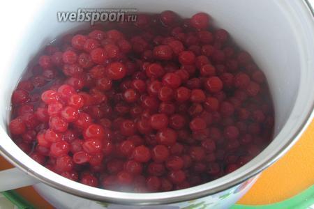Калину промыть, предварительно перебрав. Поставить на плиту, минут на 15, до размягчения ягод.