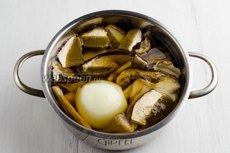 Переложить грибы в кастрюлю. Поставить варить с небольшой луковицей до готовности.