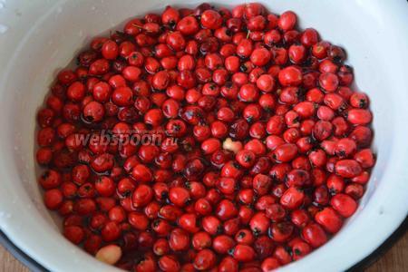 Ягоды необходимо перебрать. Если среди всей партии боярышника есть мятые, но не порченые плоды, то их выбрасывать не стоит. Они отлично подойдут для приготовления этого сладкого лакомства. Освободите ягоды боярышника от плодоножек, уберите листья и прочий мусор. Очень хорошо промойте ягоды. Сложите подготовленные ягоды в кастрюлю, залейте питьевой водой.