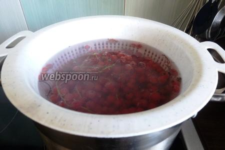 Смородину переберём и помоем. Закипятим воду и опустим дуршлаг со смородиной на несколько секунд в кипяток.