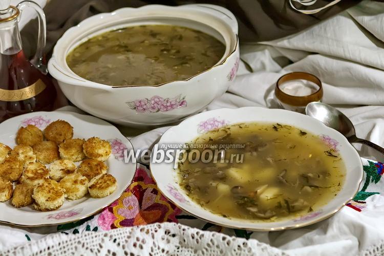 Фото Суп с маслятами