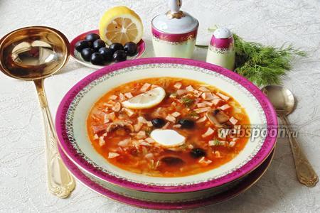 Фото рецепта Солянка мясная с грибами