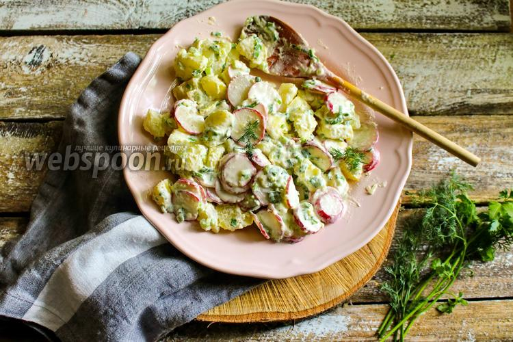Фото Салат из картофеля и редиски с заправкой из сметаны и хрена