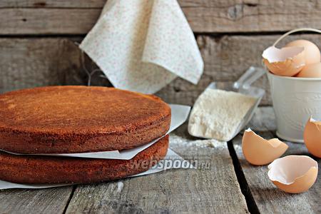 Бисквит «Sponge»