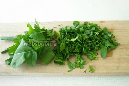 Зелень промыть и просушить, затем мелко нарезать или же просто порвать.