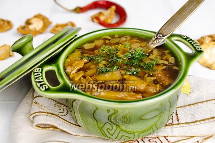 Фото Суп с кабачками сушёными