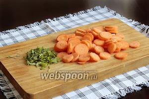 Морковь нарезать тонкими колечками, кинзу или петрушку мелко порубить.