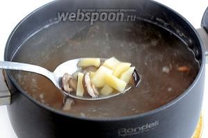 Картофель нарезать и добавить в кастрюлю к размягчённым грибам. Варить до готовности картофеля. Я люблю, чтобы он разварился.