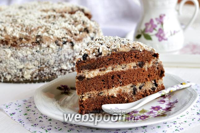 Фото Шоколадный торт с черносливом