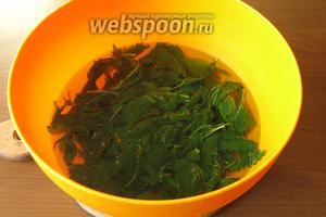 Вынимаем зелень в холодную воду.