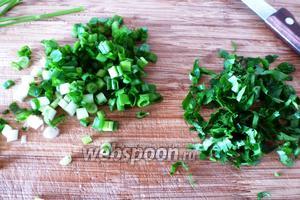 Зелень петрушки (3 веточки) и зелёный лук (5 перьев) помоем и обсушим, мелко нарежем.