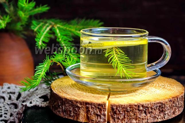 Фото Чай из хвои