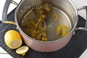 Вынуть мяту, а в посуду выжать сок 1 лимона. Хорошо охладить напиток в холодильнике.