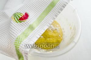 Тесто получится очень послушное. Скатать его колобком. Накрыть салфеткой. Поставить в тепло на 1,5 часа, на расстойку.