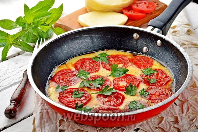 Фото Жареный сулугуни с помидорами