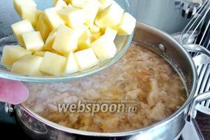 Когда грузди почти сварятся, кладём картофель (2-3 штуки), очищенный и нарезанный кубиками. Варим до готовности картофеля.