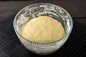 Выложить тесто в миску, в которой оно замешивалось. Накрыть полотенцем и отправить в тёплое место на 1 час.