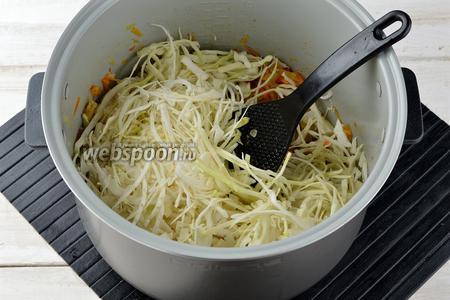Добавить очень тонко нашинкованную капусту (500 г), соль (1 ч. л.), сахар (0,5 ч. л.). Перемешать и готовить под закрытой крышкой 20-25 минут до мягкости капусты. Если есть такая необходимость и капуста выделяет мало сока, добавить в чашу мультиварки 100-150 мл кипятка.