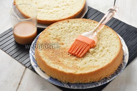 Разрезать бисквит на 2 части и каждую пропитать карамельным сиропом.