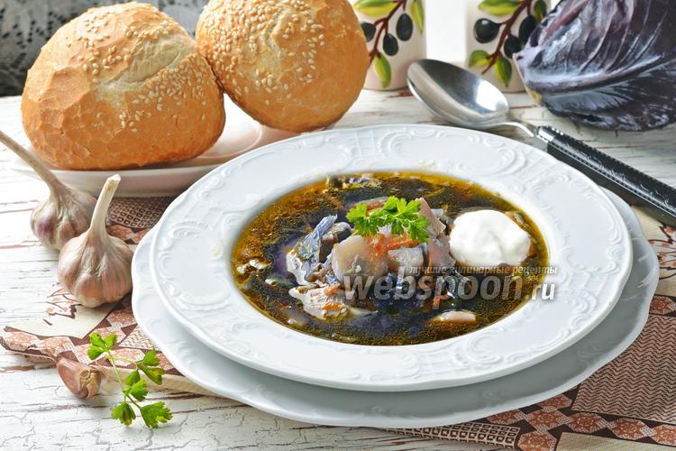 Фото Суп из краснокочанной капусты