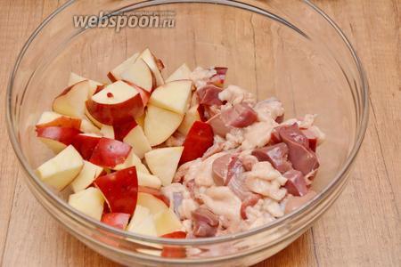 Яблоки, утиную печень и куриные желудки режем крупными кусочками. Соединяем в глубокой миске.