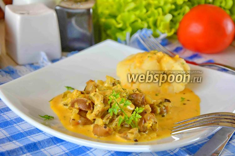 Фото Куриные желудки в сметанном соусе