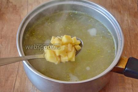 Когда куриные желудочки сварятся, добавляем в кастрюлю картофель, варим до полуготовности.