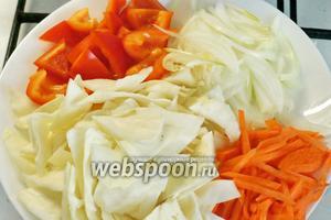 Нарезаем овощи. Капусту (100 г) режим шашечками, морковь (50 г) — соломкой, 1 луковицу — полукольцами, перец (50 г) — шашечками, чеснок раздавить ножом. Фасоль размораживаем.