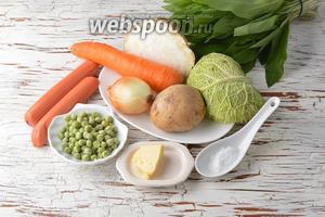 Для работы нам понадобятся молочные сосиски, замороженный зелёный горошек, репчатый лук, морковь, корень сельдерея, соль, картофель, сливочное масло, черемша, савойская капуста.